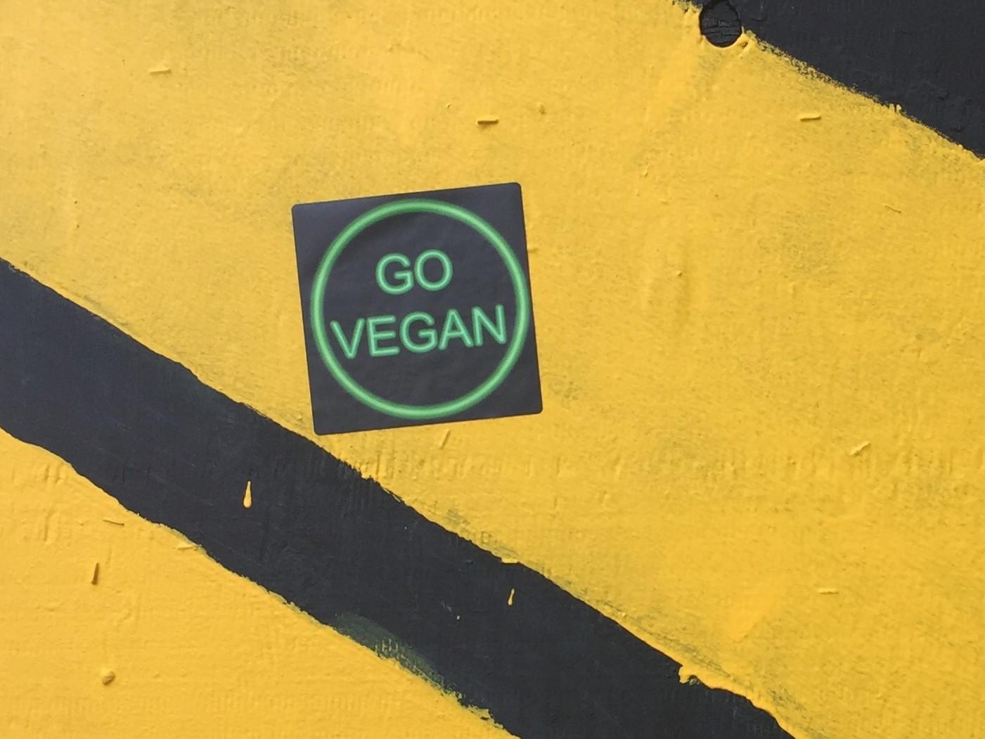 Vegan ve Alkali Beslenme 101